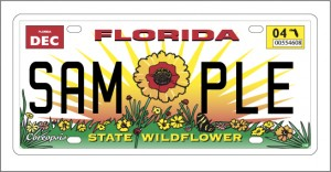 Florida Wildflower License Plate