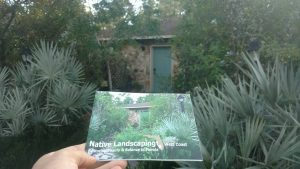 Milkweed Man Scott Allen Davis' front yard is featured on the FNPS native landscaping brochures