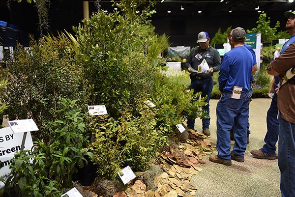 Landscape professionals check out a corner of SCCF's South Florida landscape demonstration.