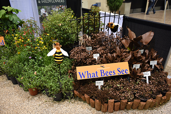 "This year's theme ""See native plants in a new way"" must have really motivated our exhibitors, who really stepped up their displays this year. Here we see Pine Sponsor Green Isle Gardens Nursery's display contrasting what bees see when they fly over the typical non-native landscape."
