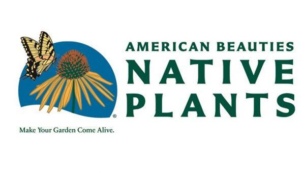 American Beauties Native Plants logo